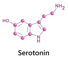 Serotonin Serotonin Deficiency Los Angeles California Online Pharmacy